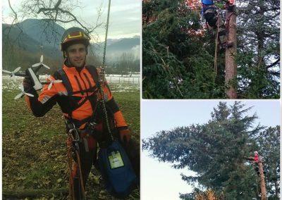 Sauvetage de drône et démontage d'arbres